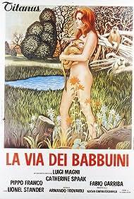La via dei babbuini (1974)