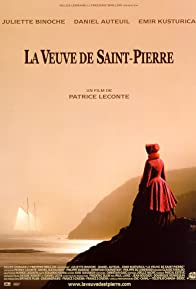 Primary photo for The Widow of Saint-Pierre