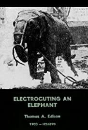 Electrocuting an Elephant Poster