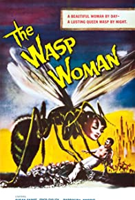 Primary photo for The Wasp Woman