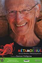 MetaMoebius