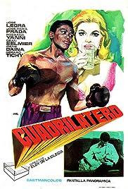 Cuadrilátero Poster