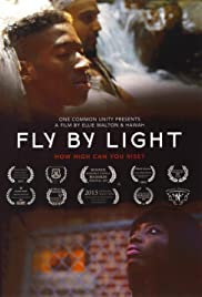 Fly by Light Poster