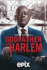 Godfather of Harlem (2019)