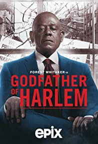 Primary photo for Godfather of Harlem