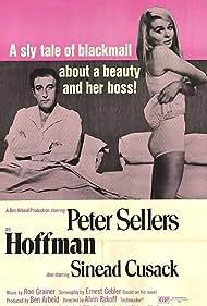 Hoffman Poster - Movie Forum, Cast, Reviews