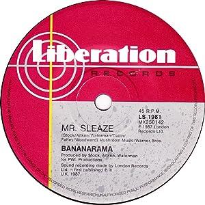 Allmovie downloads Bananarama: Mr. Sleaze by none [320x240]