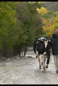 Holy Cow (2015)