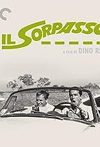 Primary image for Ettore Scola on 'Il Sorpasso'