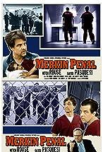 Primary image for Merkin Penal