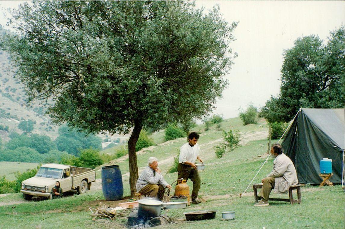 Through the Olive Trees (1994) Online Subtitrat in Romana
