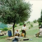 Nosrat Bagheri, Mohamad Ali Keshavarz, Hossein Rezai, and Zarifeh Shiva in Zire darakhatan zeyton (1994)