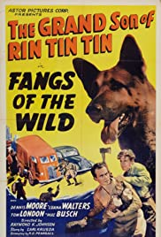 Fangs of the Wild Poster