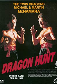Primary photo for Dragon Hunt
