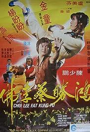 Choy Lay Fut Poster