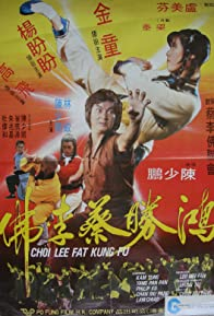 Primary photo for Choy Lay Fut