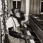 Bonzo in Bonzo Goes to College (1952)
