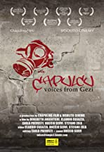 Çapulcu: Voices from Gezi