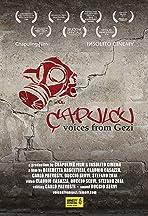 Çapulcu: Voices from Gezi