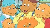 Berenstain Bears: Generic