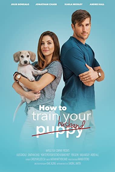 How To Train Your Husband 2017 Dual Audio In Hindi 300MB 480p HDRip
