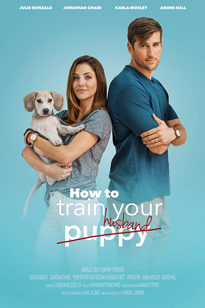 How to Train Your Husband 2018 Dual Audio Hindi ORG 350MB WEB-DL Download