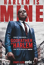 Godfather of Harlem Dublado Online