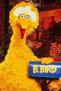 Big Bird Picture