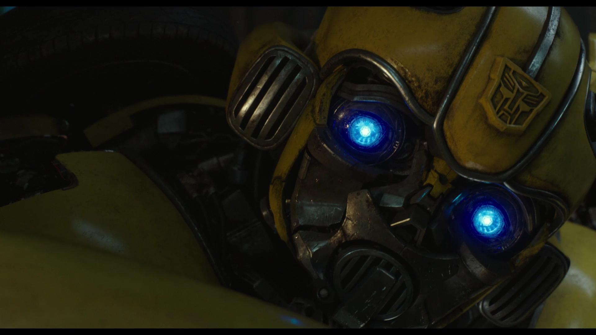 Bumblebee torrent
