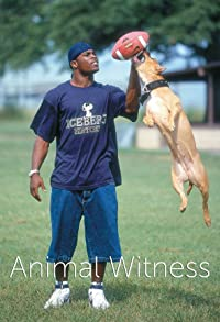 Primary photo for The Michael Vick Case