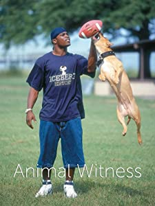 Full 3gp movies downloads The Michael Vick Case by 2160p]