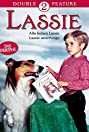 Lassie: Well of Love (1970) Poster