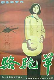 Camel Grass Poster