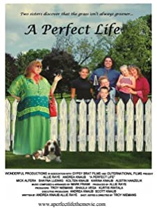 English subtitles download for english movies A Perfect Life [1920x1200]