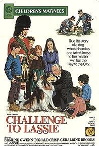Primary photo for Challenge to Lassie