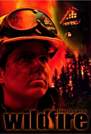 Wildfire: Feel the Heat Poster