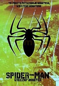 Spider-Man: Wieczny Bohater
