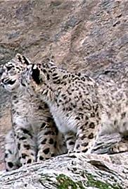 Snow Leopard: Beyond the Myth Poster