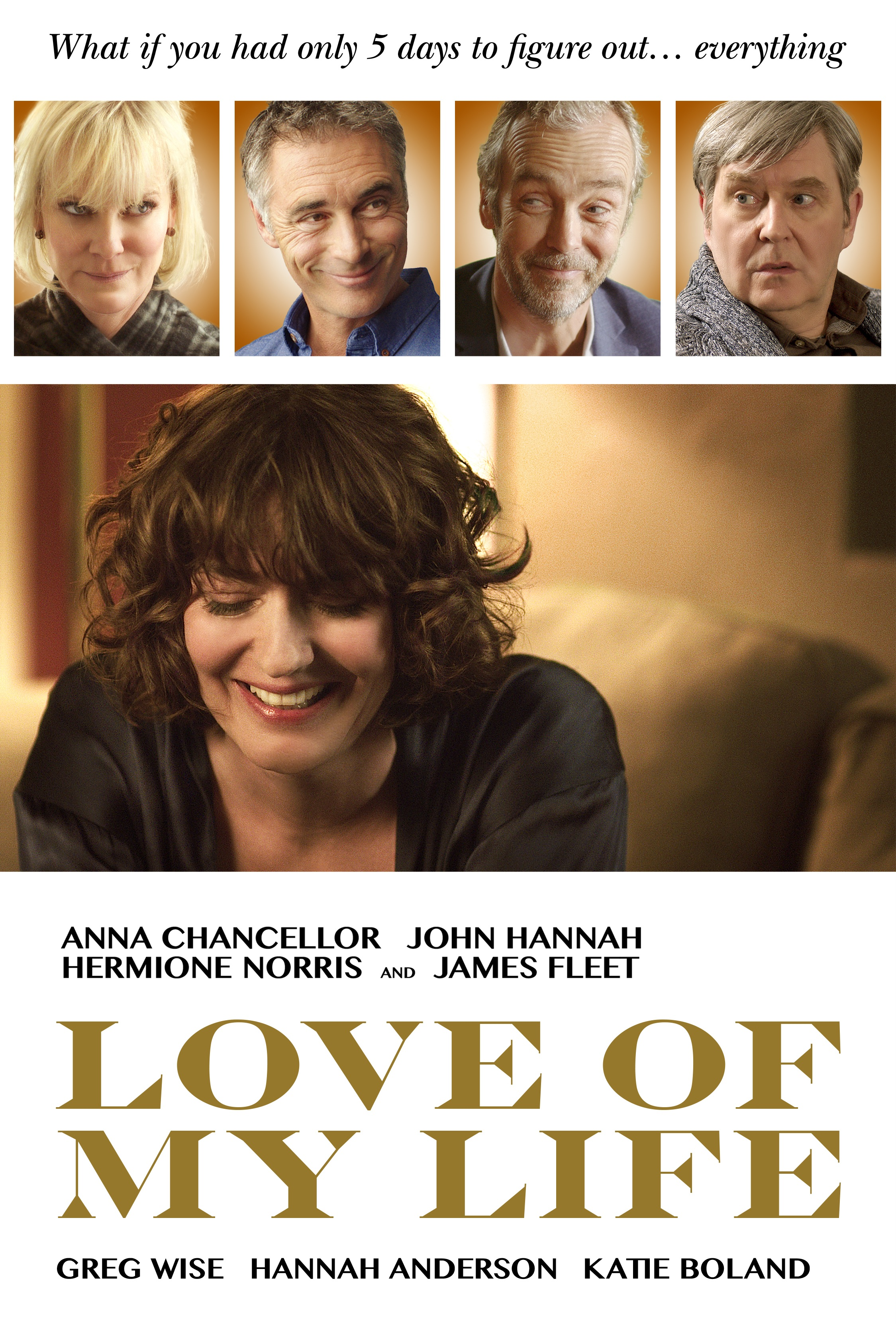 Love of My Life (2017) BluRay 720p