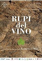 Rupi del vino