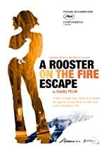 A Rooster on the Fire Escape