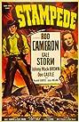 Stampede (1949) Poster
