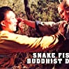 Snake Fist of the Buddhist Dragon (1979) with English Subtitles on DVD on DVD