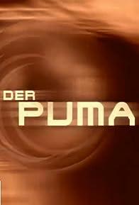 Primary photo for Der Puma - Kämpfer mit Herz
