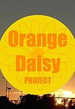 Orange Daisy Project