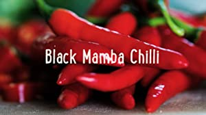 Black Mamba Chilli: Tastes Good, Looks Good, Does Good!