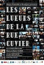 Les lueurs de la rue Cuvier