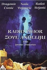 Radio Vihor zove Andjeliju (1979)