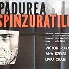 Padurea spânzuratilor (1965)