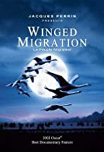 Winged Migration - Making Of